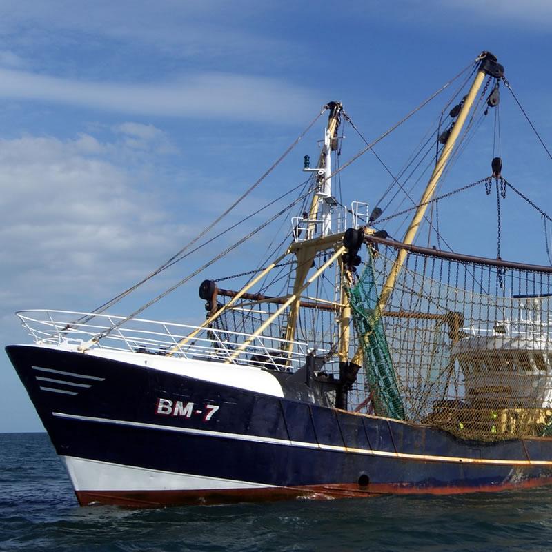 paper-1-may-2020-pst-trawlers-pekka-heikki-800x800